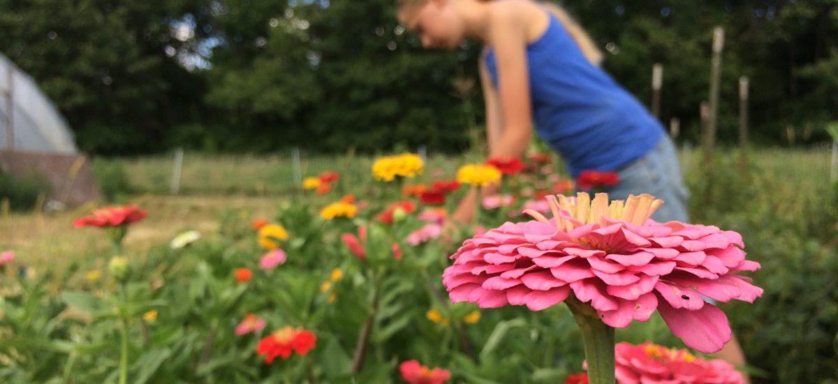 Susannah Flowers