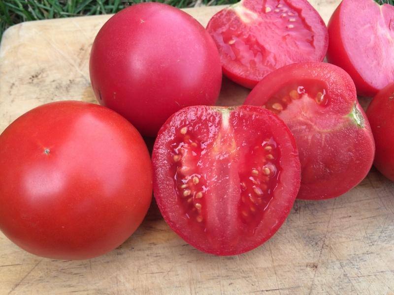 Tomato Sauce – Whole Fruit