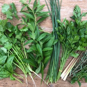 Laura's Fresh Herbs