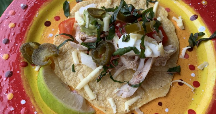 Salsa Braised Chicken for Tacos or Salad